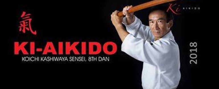 2018 Seminar with Kashiwaya Sensei